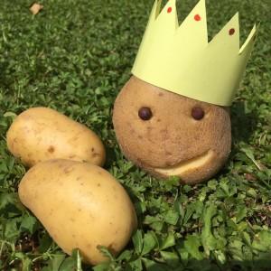 KIKOKU - Kartoffelkönig
