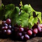 Kochen mit Trauben, Most & Wein @ Baden | Niederösterreich | Österreich